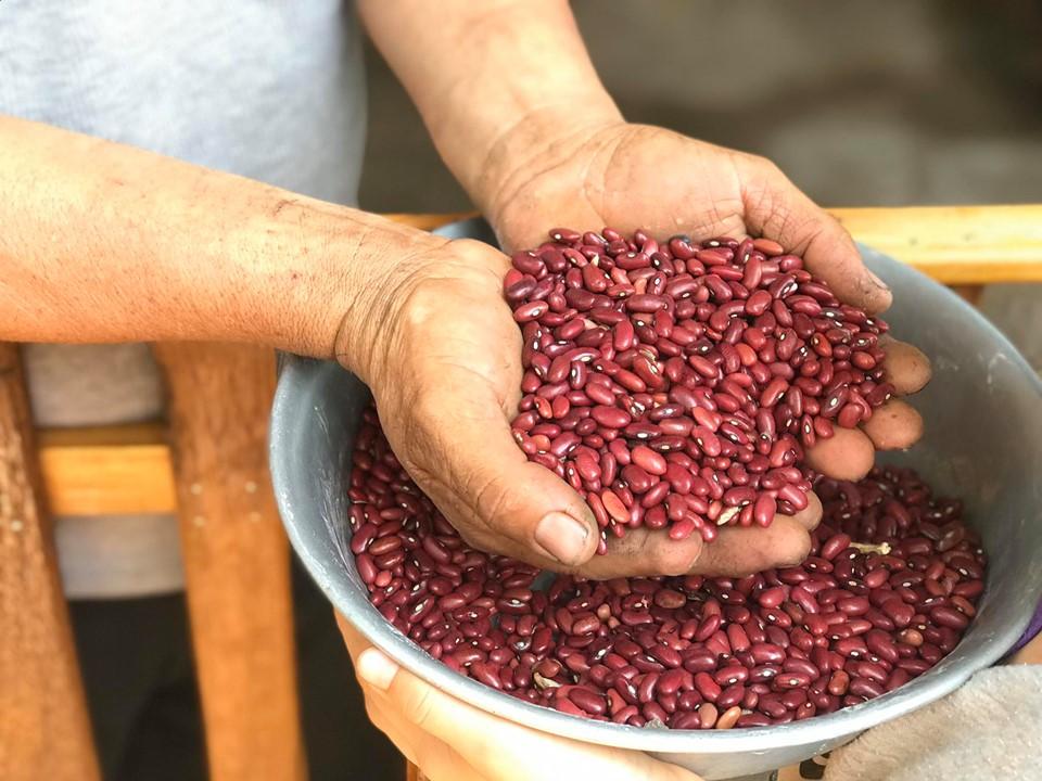 Photo of Canasta básica al alza en los pueblos de oriente