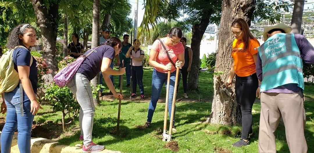 Photo of Estudiantes podrán hacer sus horas sociales en línea