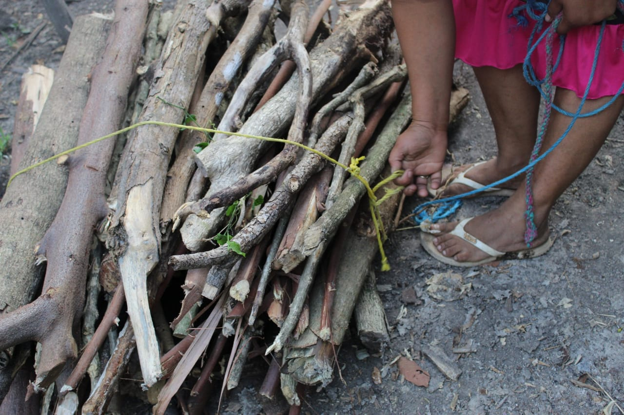 Photo of Sobreviviendo al hambre con la venta de leña