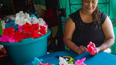 Photo of Doce años creando flores para los difuntos