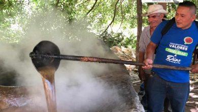 Photo of El dulce néctar de la molienda en Chilanga