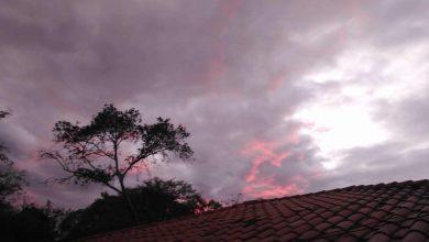 Photo of Colores, naturaleza y barro
