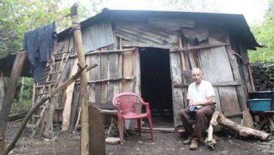 Photo of Pobreza extrema de Don Guillermo le obliga a seguir como jornalero a los 82 años